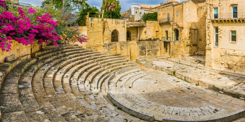 Roman amphitheatre with some purple flowers growing and buildings i the background
