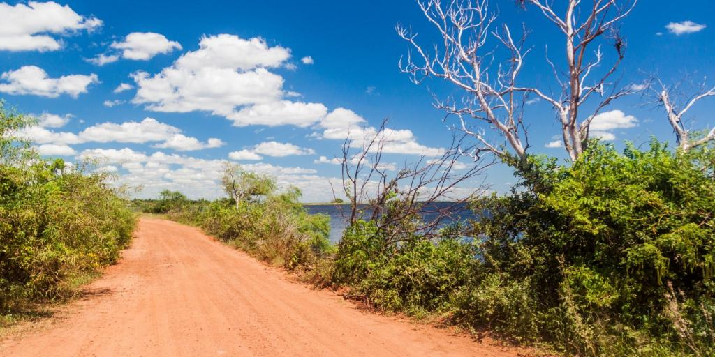 Dirt road in Esteros del Ibera National Park, Argentina