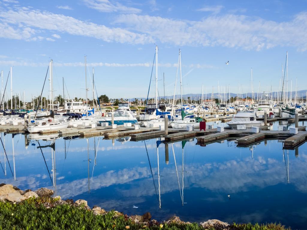 Boats docked in the Oxnard Marina, California