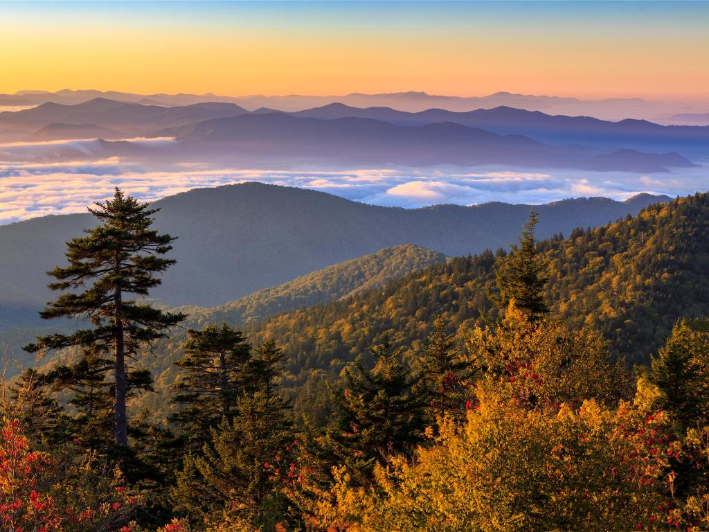 View of the Clingman's Dome in the Great Smoky Mountains National Park