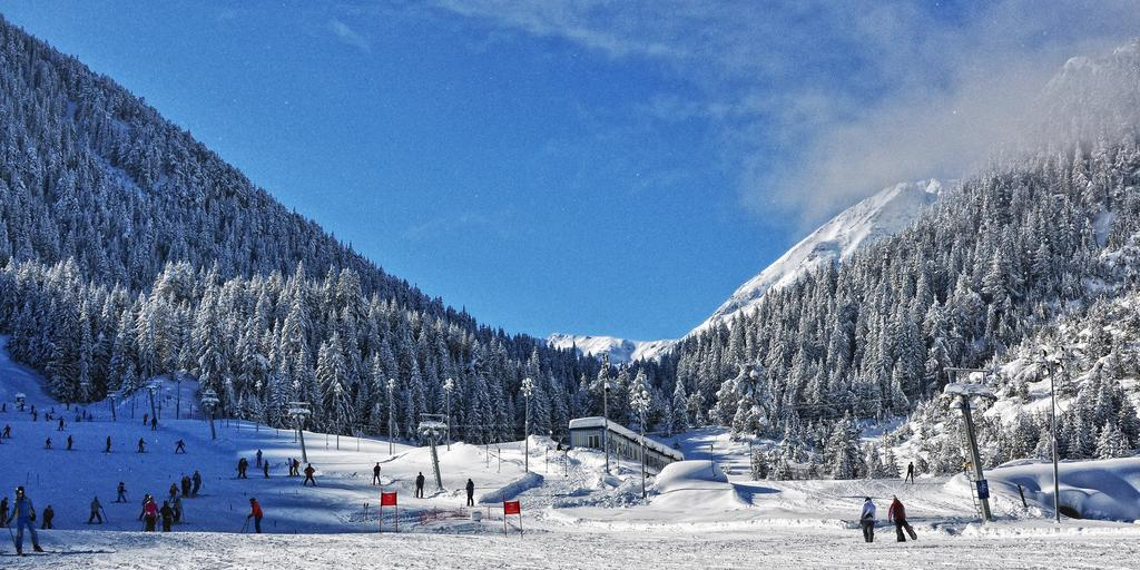 People coming off the end of a piste in Bansko onto a flat patch, with a blue sky and surrounded by trees