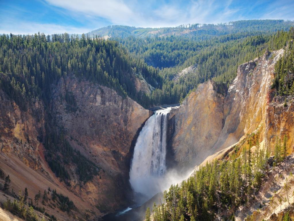 A waterfall cascades from the wooded mountains of Yellowstone National Park