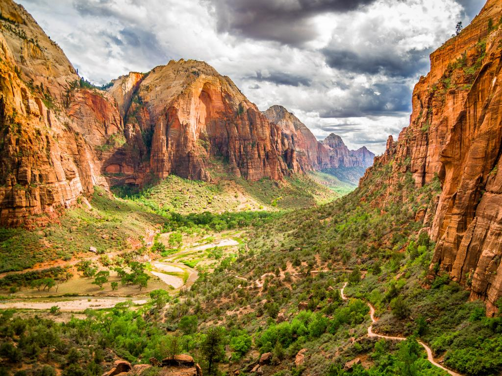 The colorful landscape of a valley in the Zion National Park in Utah