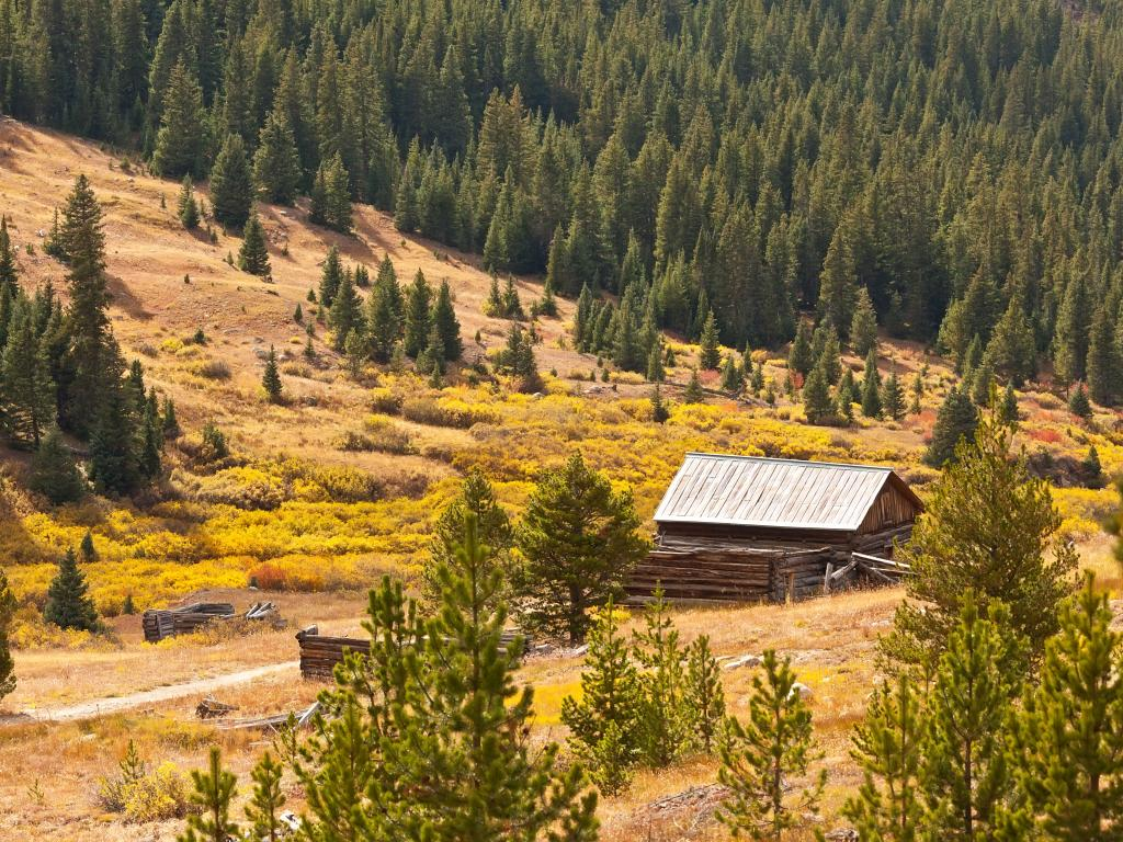 Independence Ghost Town in the White River National Forest, Colorado