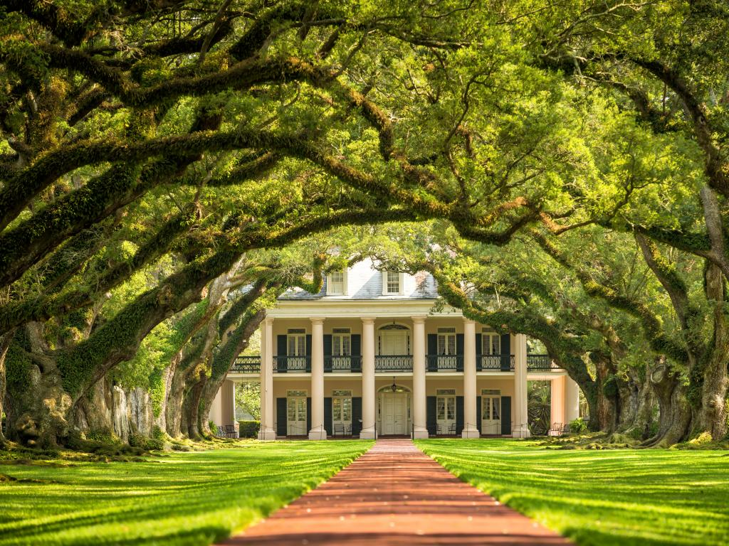 Oak Alley Plantation in southern Louisiana along the Great River Road down to New Orleans.