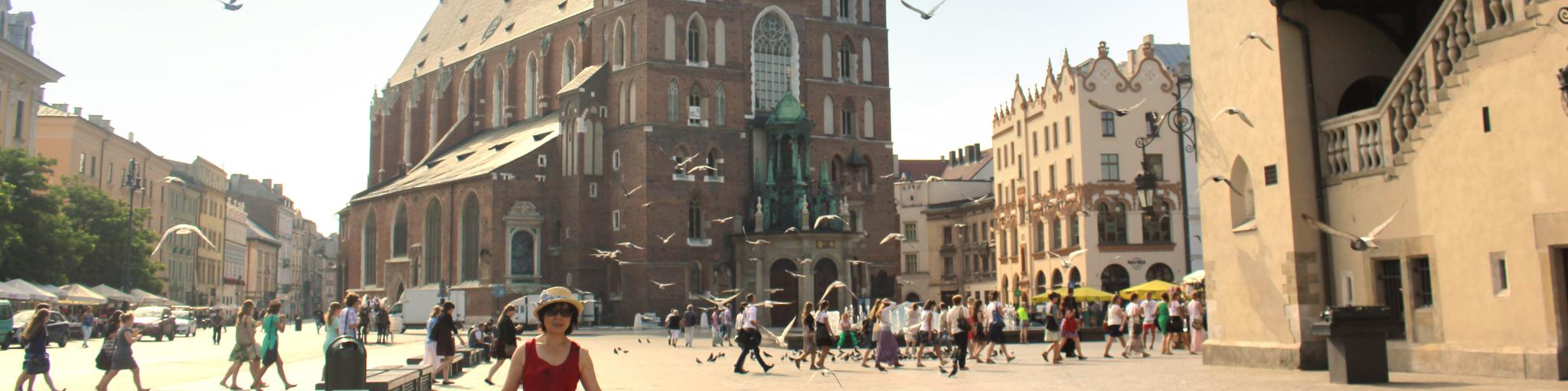Pigeons fly through the main square in Krakow