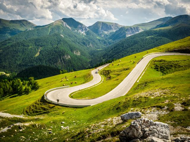 Winding Nockalm Road, Austria with green grass and cattle grazing