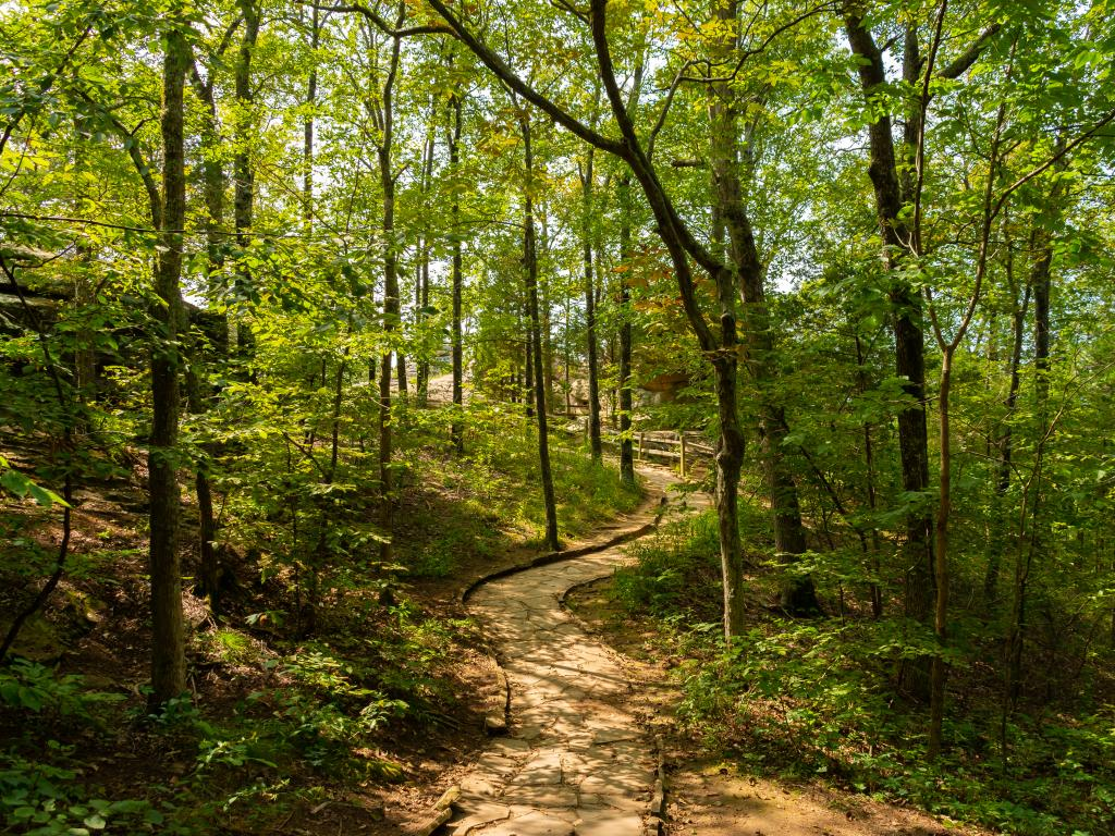 A walkway at Garden of the Gods, Shawnee National Forest, seen on the road trip from Chicago to Nashville