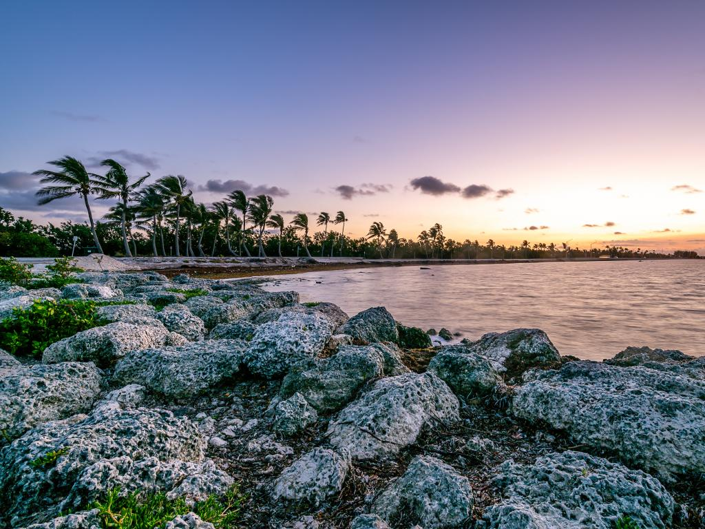 A scenic view of the ocean along Highway 1 also known as Overseas Highway at dawn with rocks and some coconut trees.