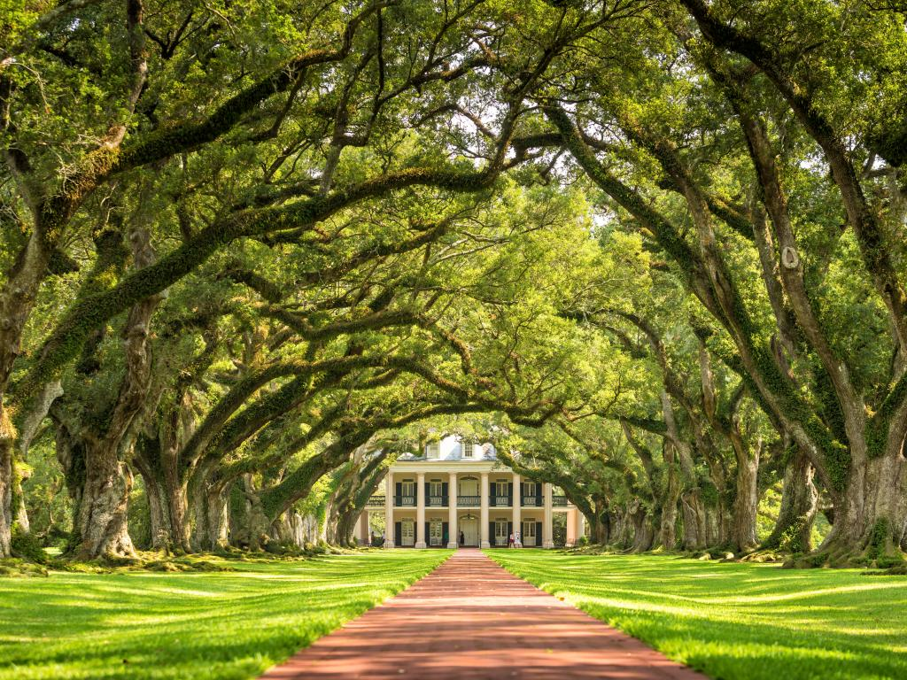The Oak Alley Plantation near Vacherie is just one of the many amazing plantations along the Great River Road.