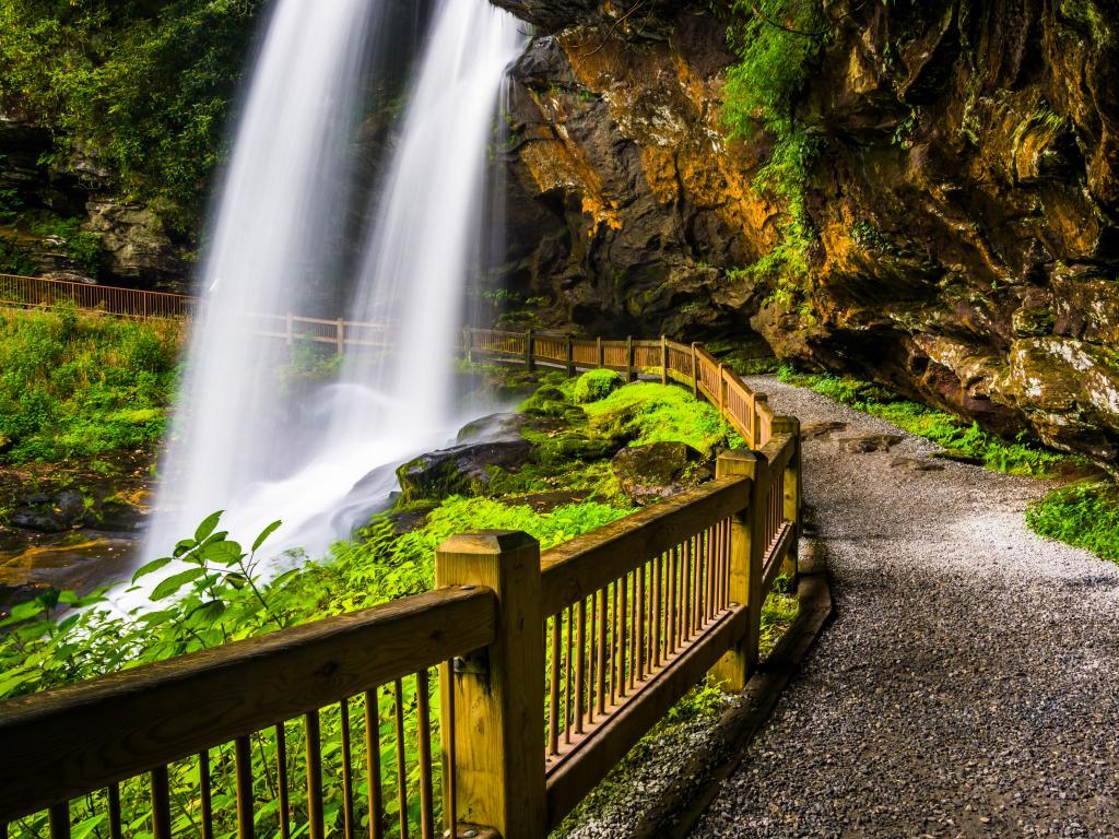 Trail behind Dry Falls, Nantahala National Forest