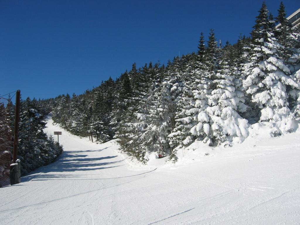 A ski run through snow-covered trees in Killington, Vermont.