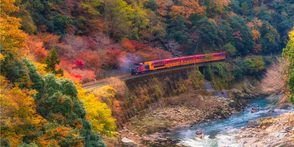 A train going through autumn leaves on the Sagano Scenic Railway, Kyoto