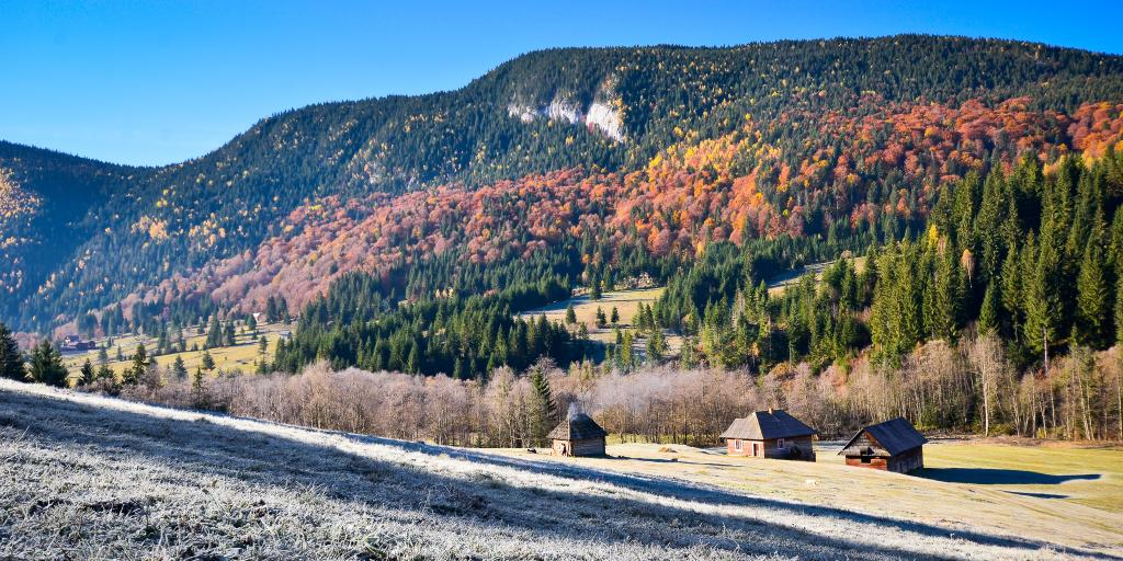 A mountain covered in orange and yellow trees in Transylvania's Raul Bicajel valley
