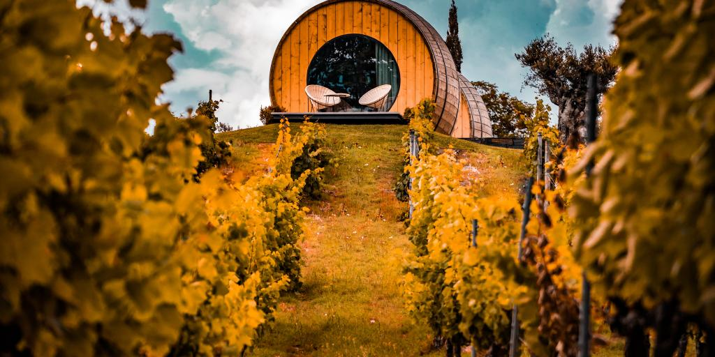 A cabin set in a vineyard in Portugal's Douro Valley, with orange autumn leaves all around