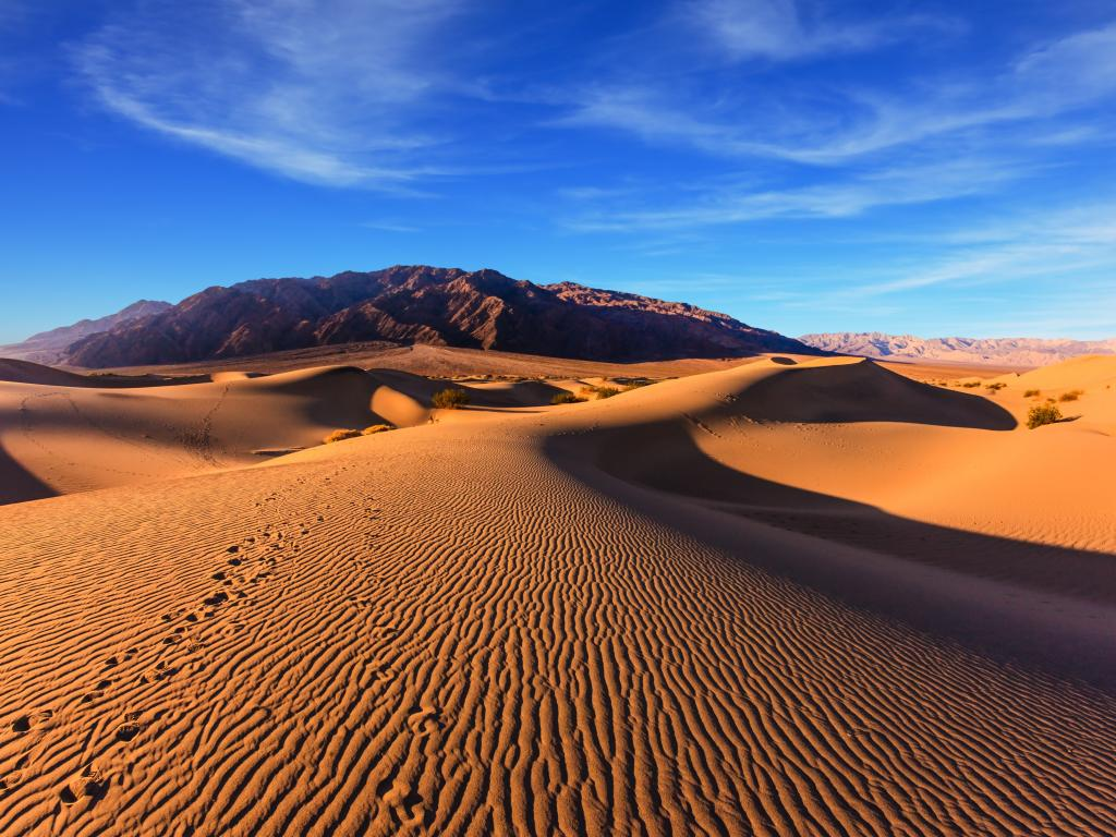 A stunning image of the Mesquite Flat Sand Dunes with sands in orange color and a clear blue sky.