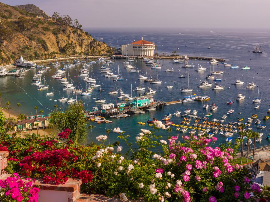 Avalon harbor on Santa Catalina Island just off the Californian coast.