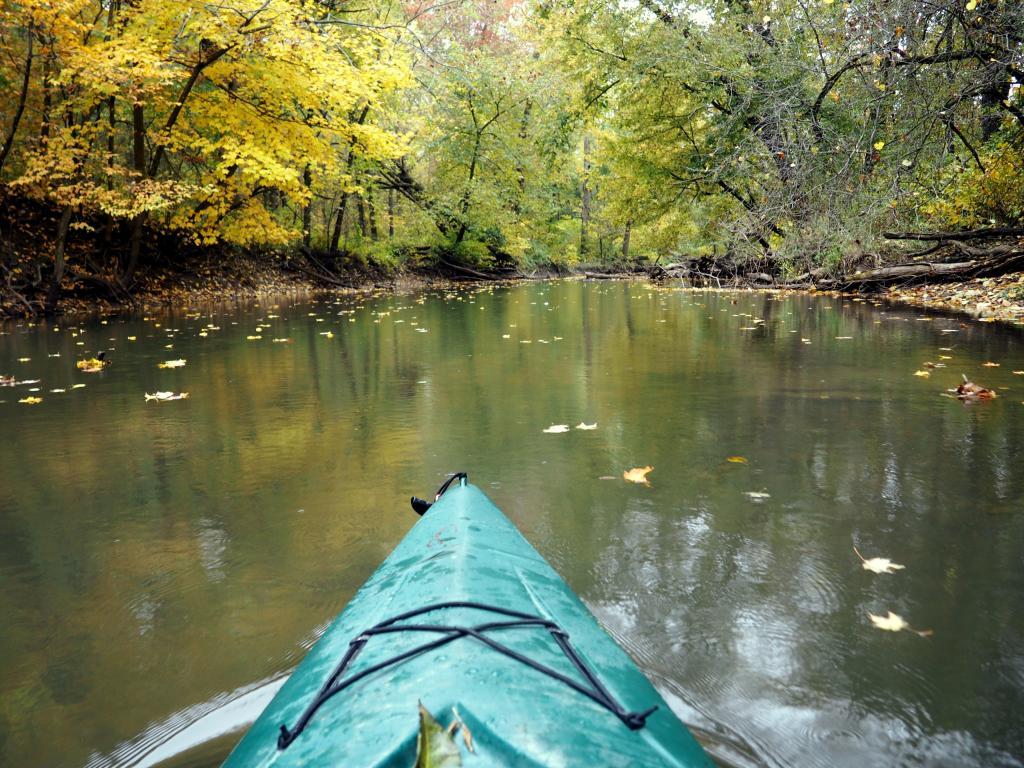 The green trees reflected the water with the leaves falling near a green kayak along the Calumet River in Indiana Dunes National Park.
