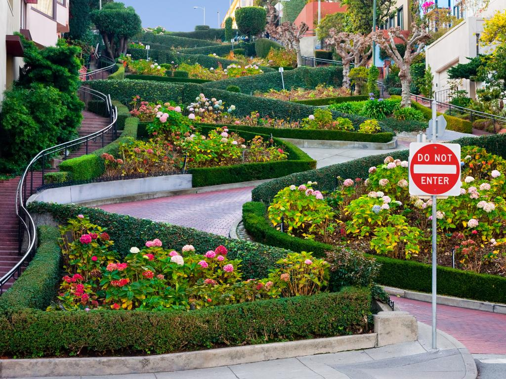 Lombard Street in San Francisco with sharp hairpin turns on a steep hill among flowerbeds.