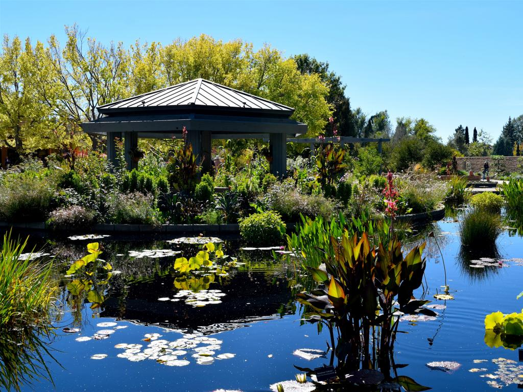 A water feature at the Botanic Gardens in Denver