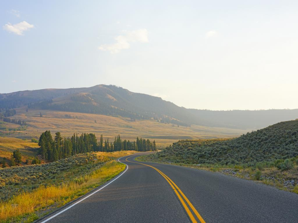 A typical Wyoming road running through Yellowstone National Park.
